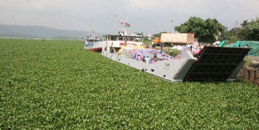Why a KES 76 million water hyacinth harvesting machine may cure Lake Victoria's curse